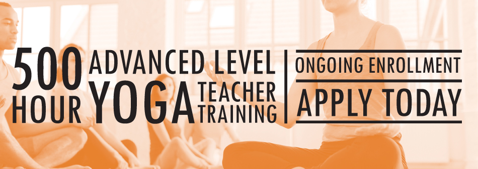 500 hour advanced vinyasa teacher training